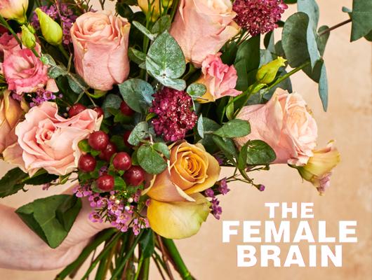 Gewinnen Sie ein Abonnement von Bloom & Wild!